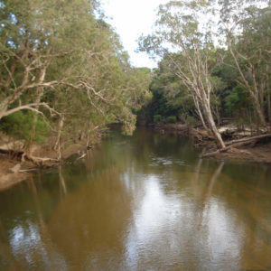 River Cape York