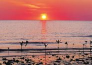 Sunset Cape York